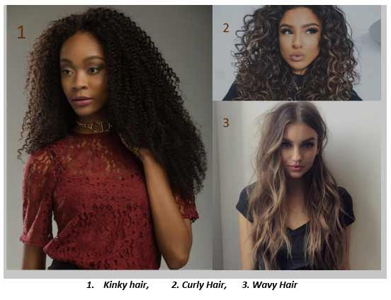 Determining the Shape of your Hair